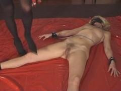 Queensnake Bdsm Torture